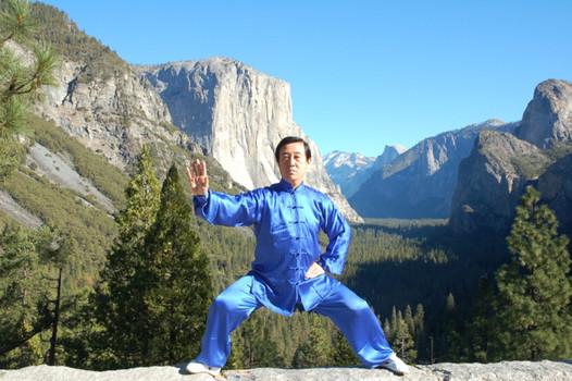 Grand Master Chen Zhen Lei